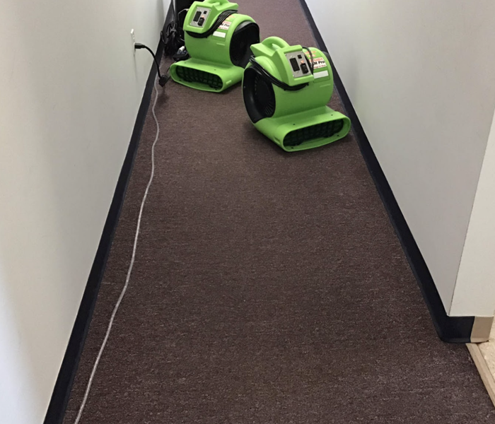 carpet with drying equipment placed