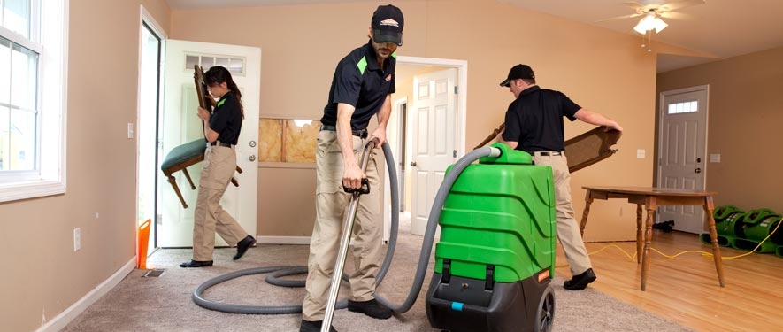 Lake Fern, FL cleaning services